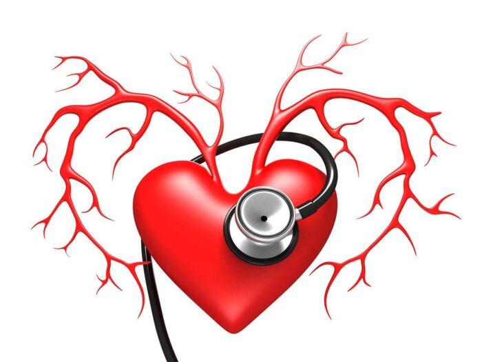 Гигиена кровеносной системы