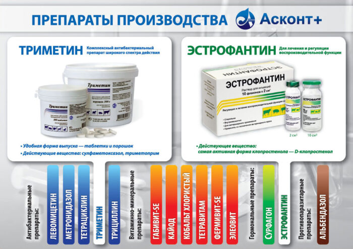 Кишечные антисептики